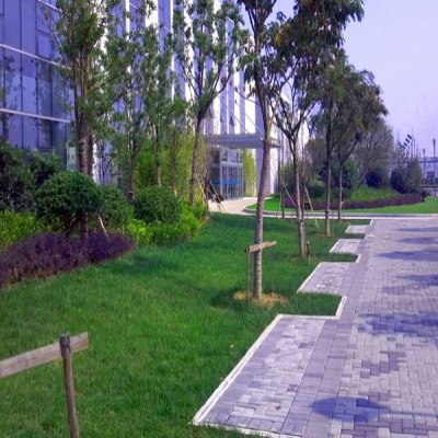 承接企业、工业区、厂区园林绿化工程